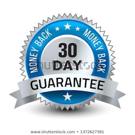 Ceny powrót gwarantować niebieski wektora ikona Zdjęcia stock © rizwanali3d