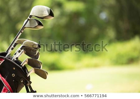 Golfütők táska sport kék klub játék Stock fotó © Morphart