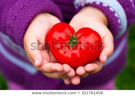 Primer plano rojo corazón hierba arte signo Foto stock © teerawit