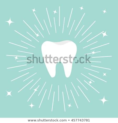 Illusztráció fehér fog kék kör egészség Stock fotó © gigra
