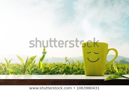 午前 笑顔 肖像 小さな 笑顔の女性 赤 ストックフォト © MikLav