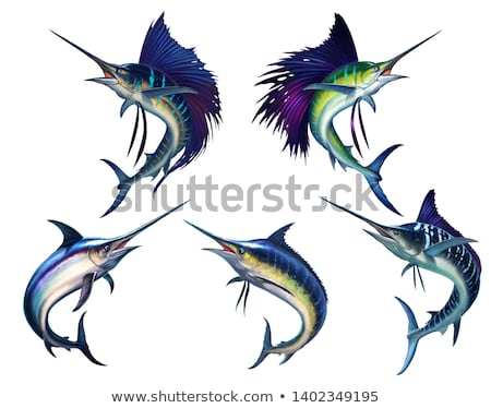 atlantic blue marlin stock photo © bluering