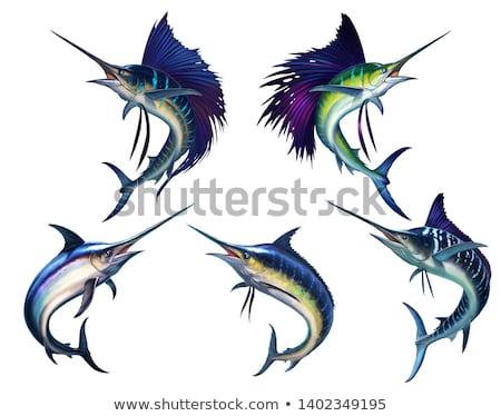 illustrazione · acqua · alimentare · pesce · mare · animale - foto d'archivio © bluering