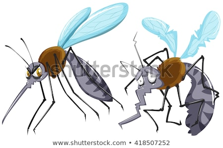 Mosquitoes strong and weak Stock photo © bluering