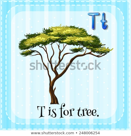 Flashcard letter T is for trunk Stock photo © bluering