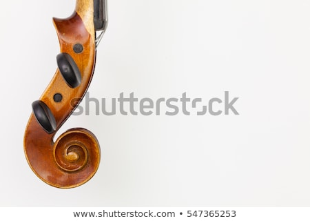 top view close up shot of old violin on the white table stock photo © capturelight