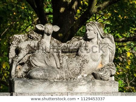 begraafplaats · oude · zwarte · raaf · kruis · achtergrond - stockfoto © meinzahn
