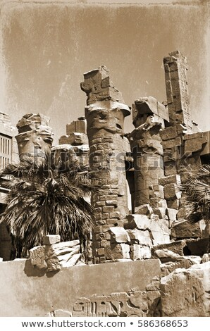 Kolommen schrijven tempel luxor retro oude Stockfoto © ssuaphoto