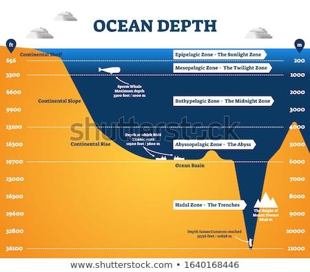 Podwodny ocean ilustracja ryb morza funny Zdjęcia stock © adrenalina