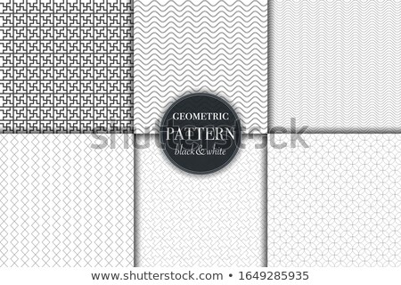 abstract line pattern collection pack Stock photo © SArts