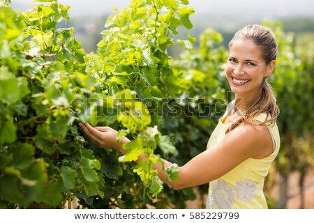 Portrait of female vintner examining grapes Stock photo © wavebreak_media