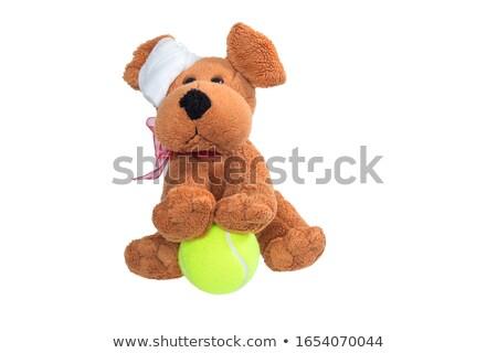 Piłka tenisowa bandaż dziedzinie działalności charakter Zdjęcia stock © wavebreak_media