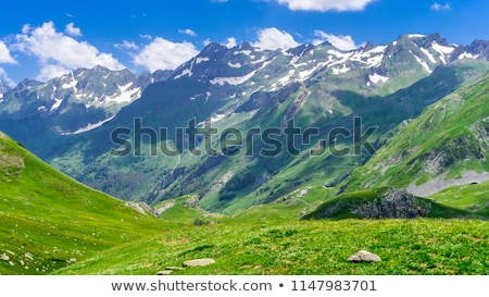 beautiful mountain peaks under snow stock photo © stevanovicigor