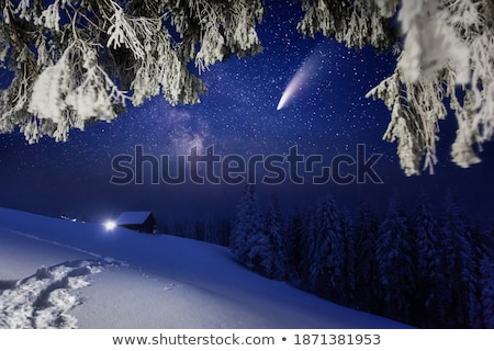 Milky Way and tree. Amazing rural scene with starry sky Stock photo © denbelitsky