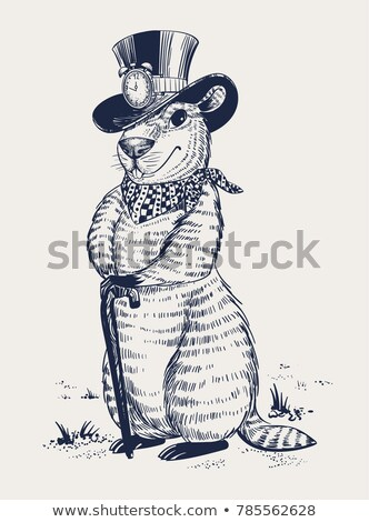 Groundhog day. Marmot in hat laid his paws on walking stick Stock photo © orensila