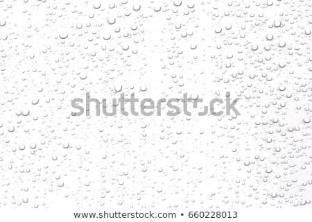 Regen Tröpfchen läuft nach unten Wasser schwarz Stock foto © FOTOYOU