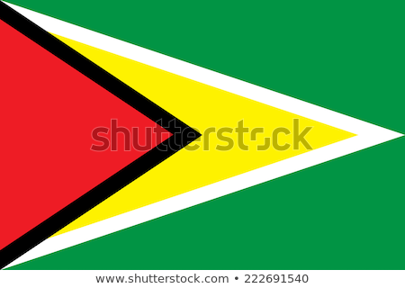 Guyana zászló fehér terv világ háttér Stock fotó © butenkow