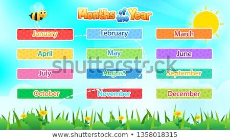 Maanden jaar banner illustratie achtergrond kunst Stockfoto © bluering