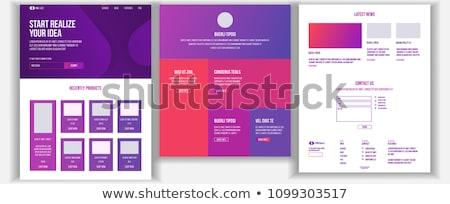Website design sablon vektor üzlet interfész leszállás Stock fotó © pikepicture