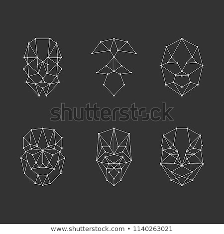 Scanning grid for face recognition. Set face recognition. stock photo © AisberG