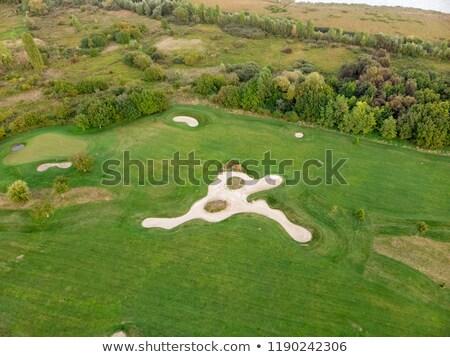 campo · da · golf · golf · buco · alberi - foto d'archivio © digoarpi