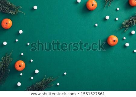 Kar yağışı karanlık yeşil kış gökyüzü kar Stok fotoğraf © romvo