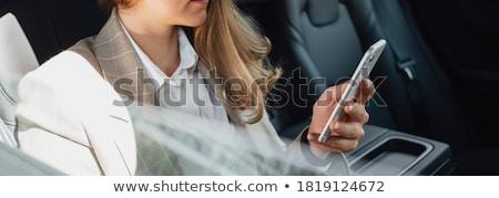 gyönyörű · fiatal · szőke · nő · üzletasszony · utazás · első · osztály - stock fotó © kzenon