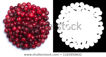 Bowl of Cranberries, top view, paths Stock photo © maxsol7
