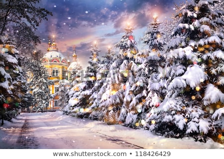 russian christmas of christ stock photo © olena