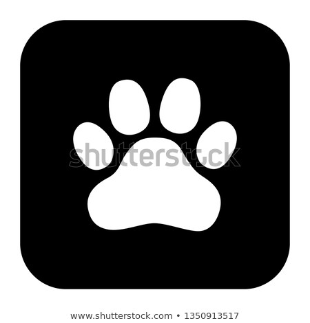 illustration of a square application button with an animal footp stock photo © kyryloff