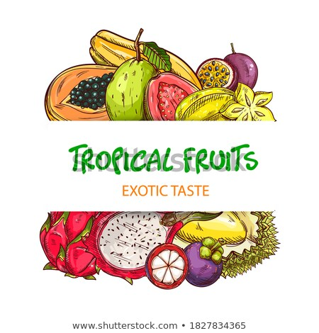 Papaya Exotic Fruit Vector Poster. Papaw Pawpaw Stock photo © robuart