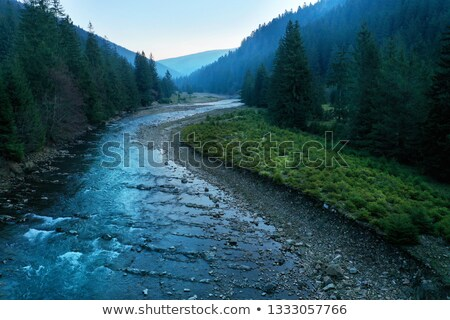 Picturesque mountain river close-up. Carpathian mountains Stock photo © vlad_star