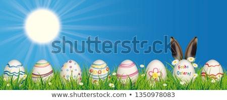 tavşan · renkli · doğa · paskalya · yumurtası · çim - stok fotoğraf © limbi007