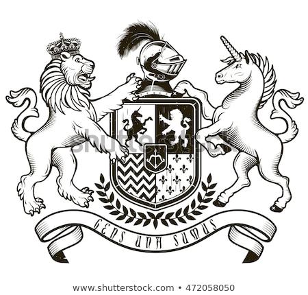 oroszlán · kabát · karok · címer · középkori · embléma - stock fotó © krisdog