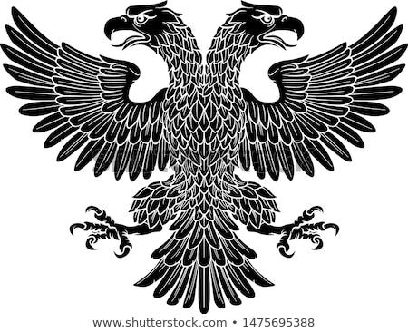 vaderlandslievend · amerikaanse · adelaar · vlag · illustratie · kaart - stockfoto © krisdog