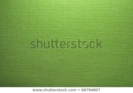 Seamless green fabric texture stock photo © ratselmeister