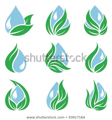 leaf and ripple icon set Stock photo © bspsupanut