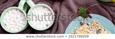 Banner twee beker koffie warme chocolademelk heemst Stockfoto © Illia