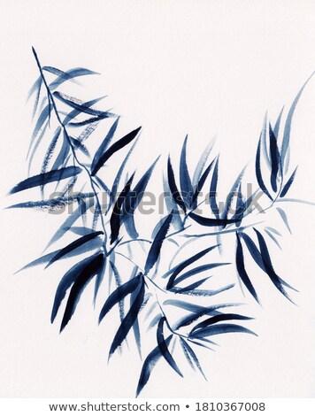 bamboo grunge background illustration stock photo © hermione