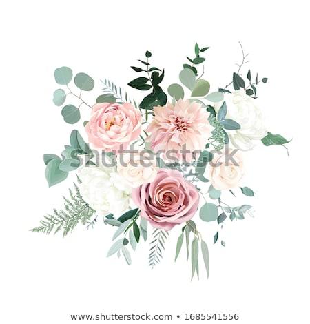 bege · rosas · floral · dois · alto · chave - foto stock © elenaphoto