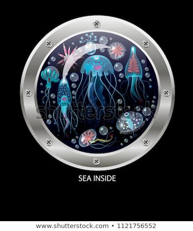 Beautiful mermaid in porthole. vector illustration  Stock photo © carodi