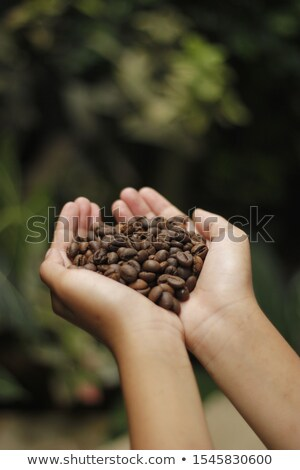 girl hold coffee beans stock photo © anna_om