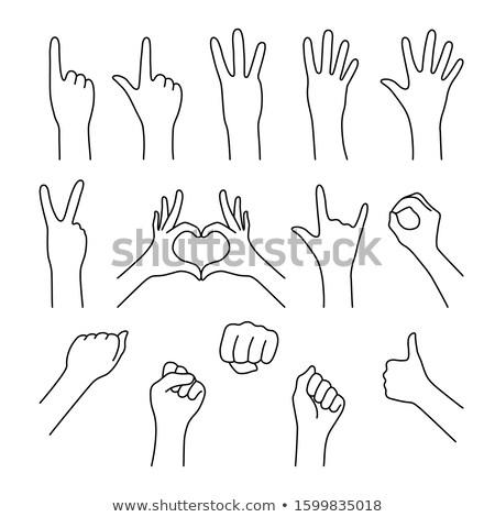 手 · 番号 · 4 · 右 · 女性 - ストックフォト © stryjek