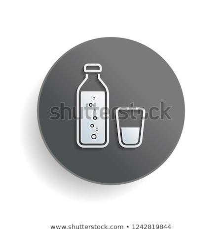 Blauw · grijs · icon · knop - stockfoto © Myvector