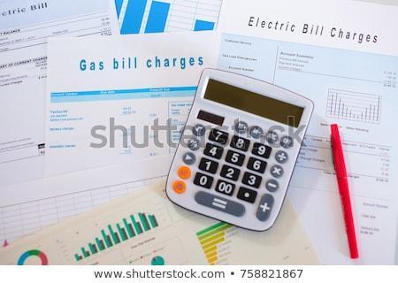 saving money due to energy efficiency concept stock photo © neirfy