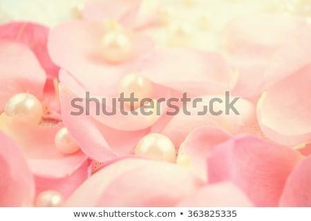 Rózsa szatén szövet klasszikus valentin nap szeretet Stock fotó © frannyanne