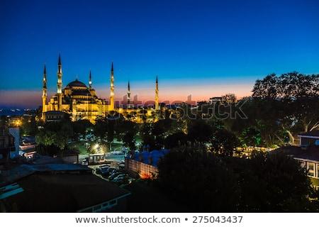 kilátás · kupola · mecset · Isztambul · Törökország · arany - stock fotó © bloodua