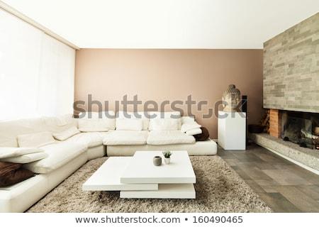 Nappali belsőépítészet fehér bőr kanapé otthon Stock fotó © vizarch