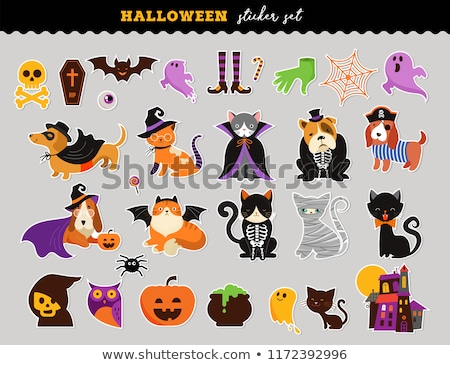 Cute Dog In A Vampire Costume With Pumpkin stock photo © digitaljoni