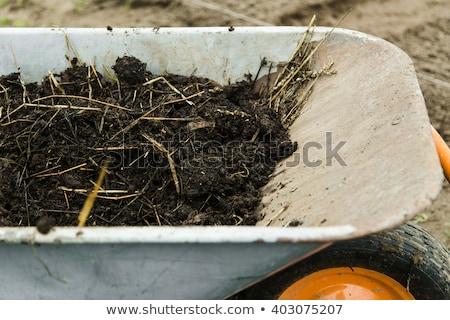 natuurlijke · meststof · koe · veld · hoop · klaar - stockfoto © morrbyte